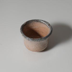 hagi-tato-shuk-0082